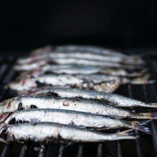 Mořské ryby na grilu
